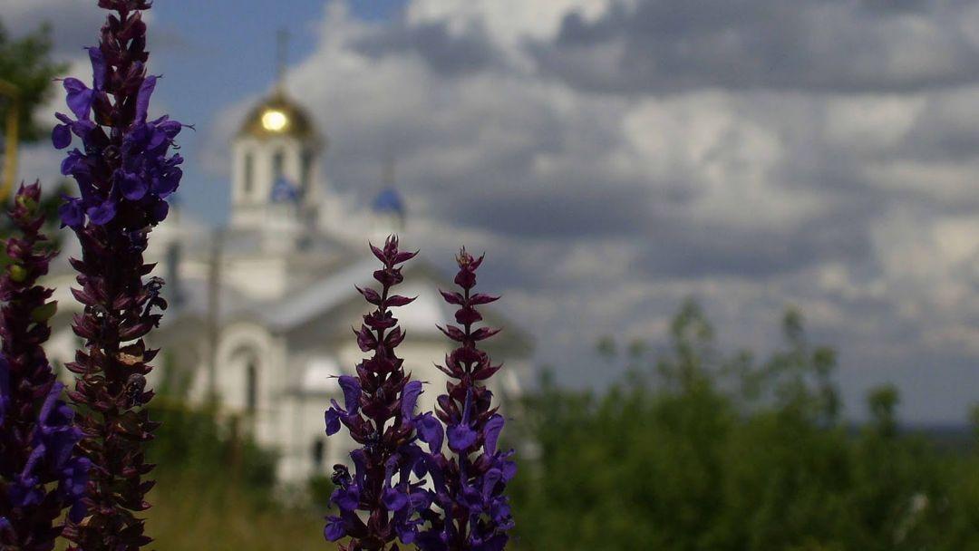 Экскурсия Серафимович