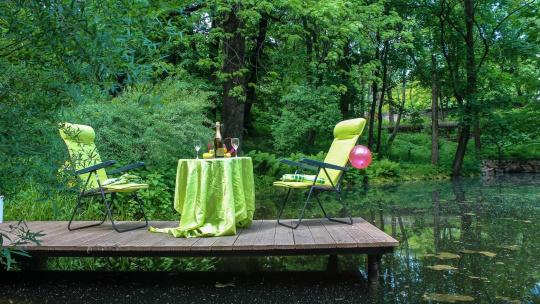 Экскурсия Ужин у озера в ботаническом саду по Калининграду