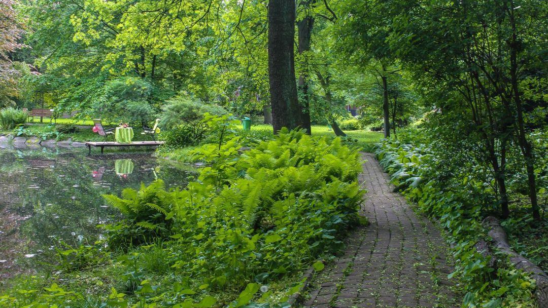 Ужин у озера в ботаническом саду - фото 4