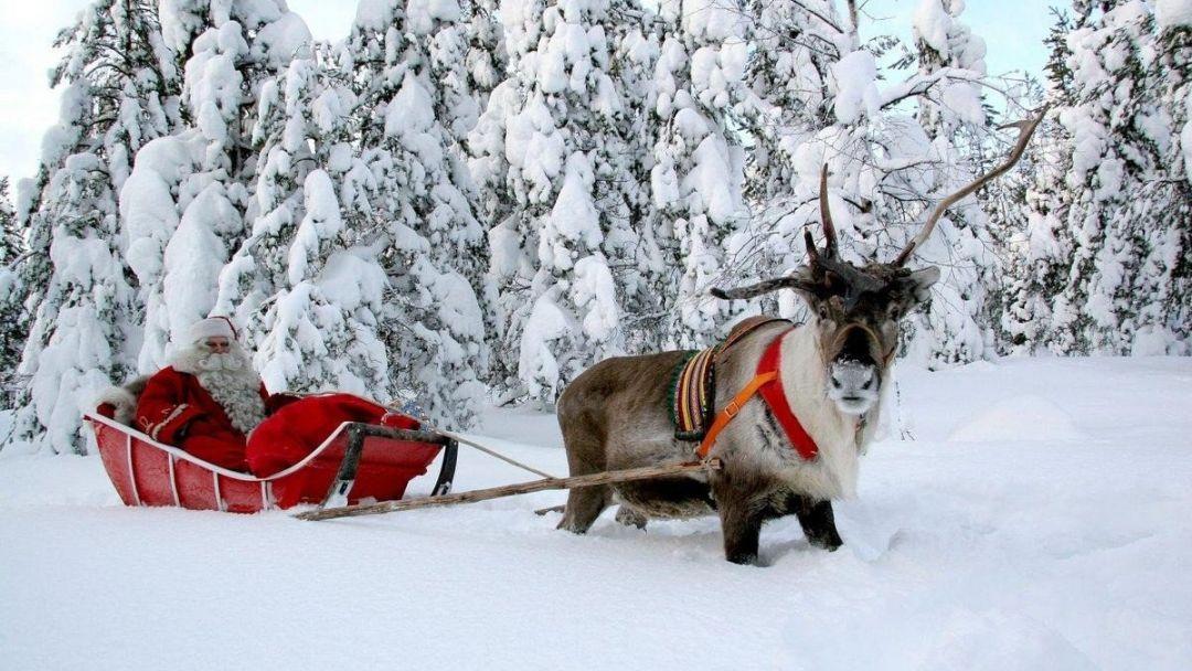 Экскурсия Новогодние приключения с Йоулупукки