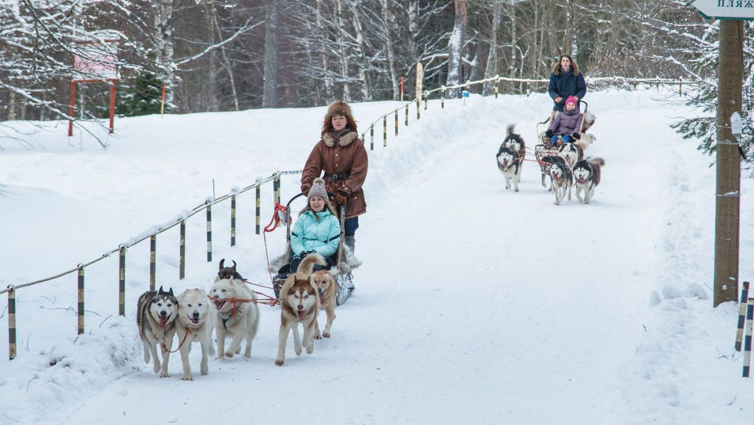 Экскурсия Зимняя программа «Русская Аляска»
