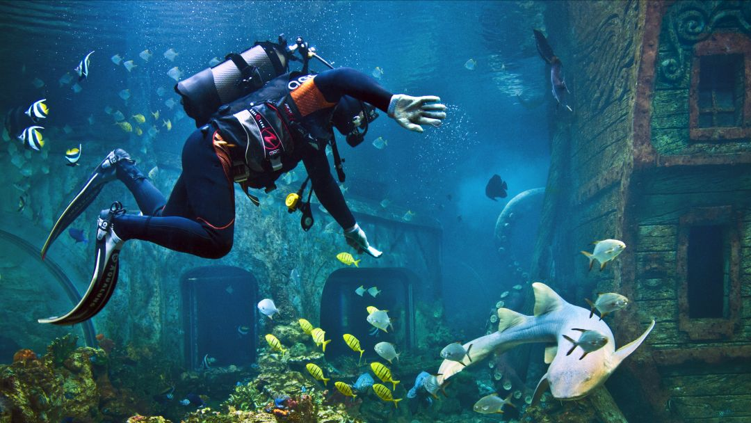 Воронежский океанариум - фото 8