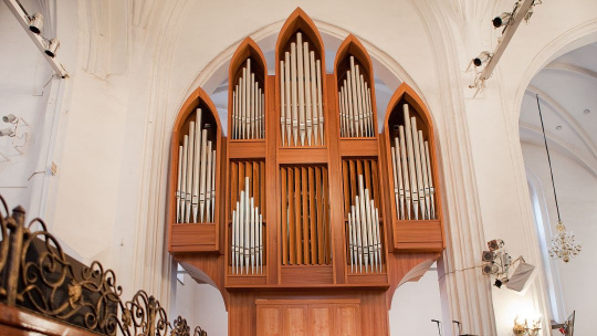 Дневной органный концерт в Кафедральном соборе - фото 3