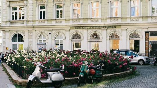 Экскурсия в город Вена из Праги - фото 10