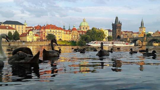 Прага - 8 свиданий в сердце города. - фото 11