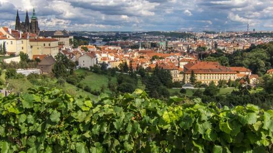 Прага - 8 свиданий в сердце города. - фото 12