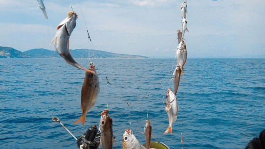 Рыбалка в Греции - фото 3
