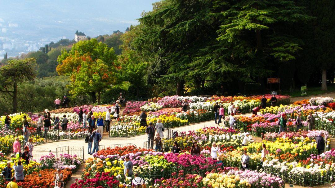 Никитский ботанический сад и морская прогулка - фото 3