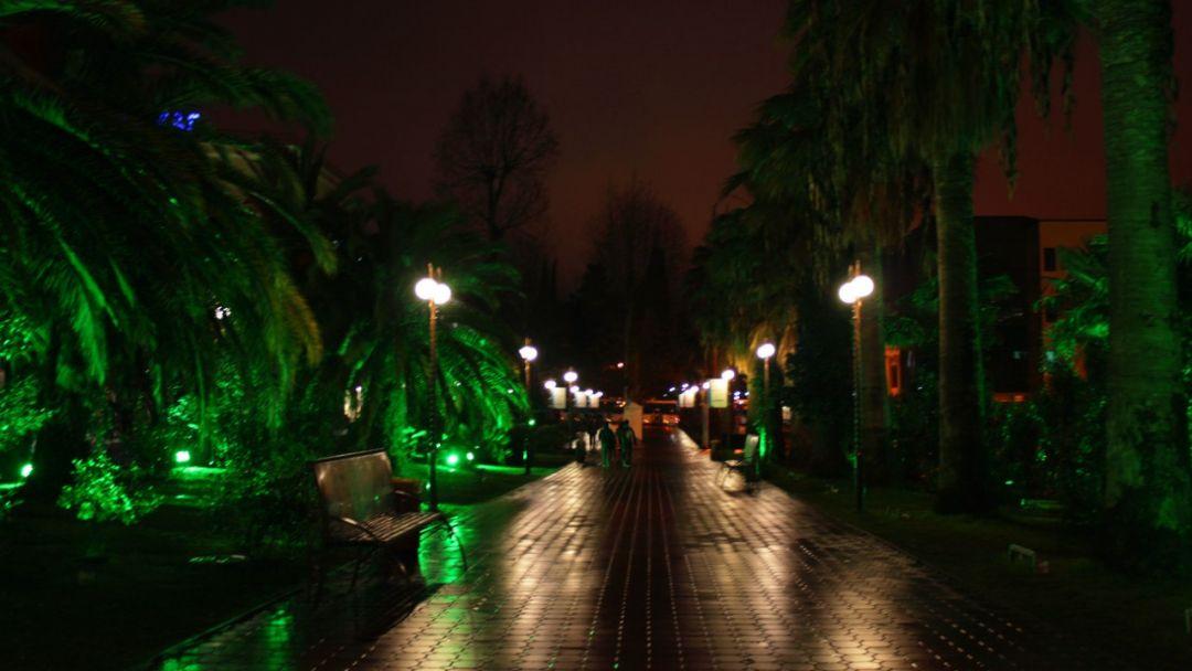 Вечерняя обзорная экскурсия по Сочи - фото 6