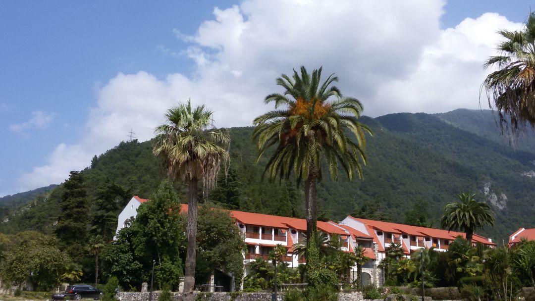 Гастрономическая экскурсия в Абхазию из Сочи - фото 3