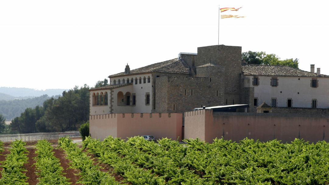 Средневековая Каталония: Мура и дегустация вин в замке Олер дель Мас - фото 3