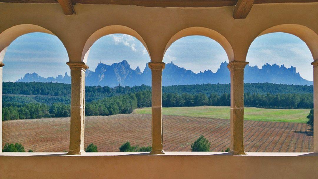 Средневековая Каталония: Мура и дегустация вин в замке Олер дель Мас - фото 4