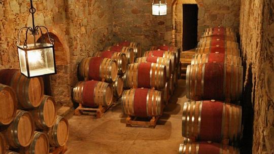 Средневековая Каталония: Мура и дегустация вин в замке Олер дель Мас - фото 5