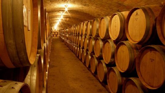 Кадакес и вина Эмпурды - фото 5