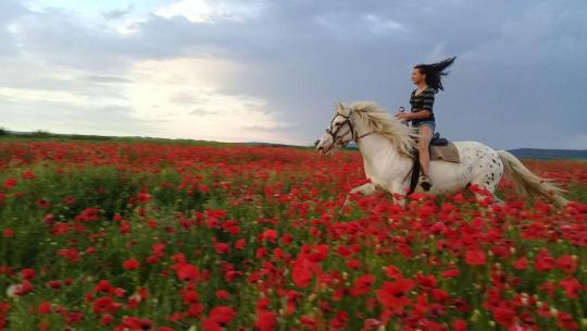 Конные прогулки - фото 4