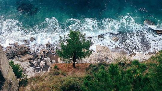 Индивидуальная Абхазия — это конструктор тура, который вы создаете сами! - фото 7