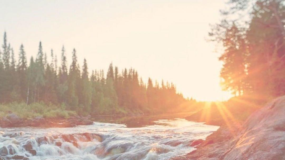 Заповедник и водопад «Кивач»  - фото 3