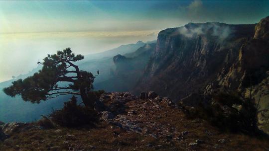 Супер-тур: Путешествие по Южному берегу Крыма и Львиная терраса  - фото 2