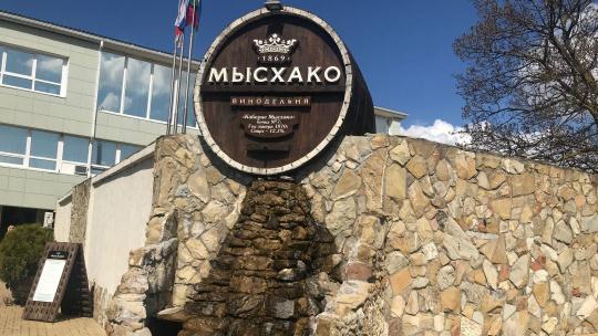 Винодельня Мысхако в Новороссийске