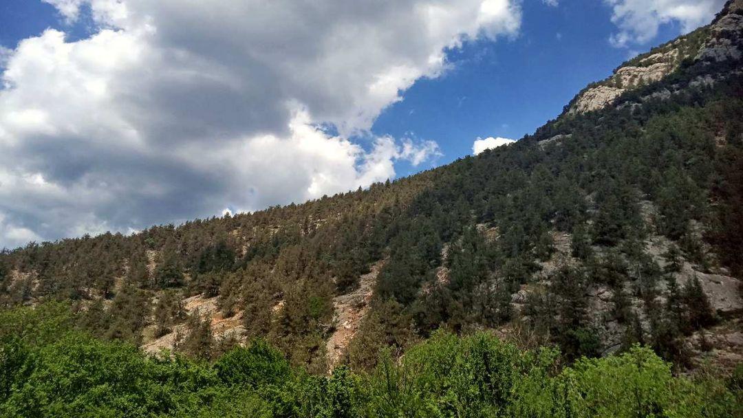 Экскурсия Изумрудный каньон Черной реки