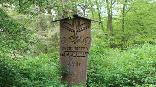 «Королевский Бор» («лесничество Гренц») по Калининграду