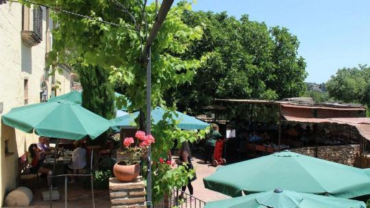 Экскурсия Монастырь Монсеррат с обедом на оливковой ферме