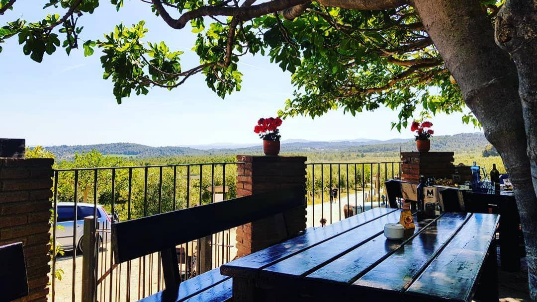 Монастырь Монсеррат с обедом на оливковой ферме - фото 3