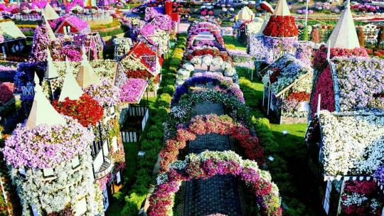 Парк цветов в Дубайе
