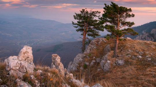 Экскурсия в Крымский государственный заповедник - фото 2