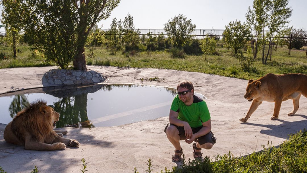 Парк львов -«Тайган» - фото 3
