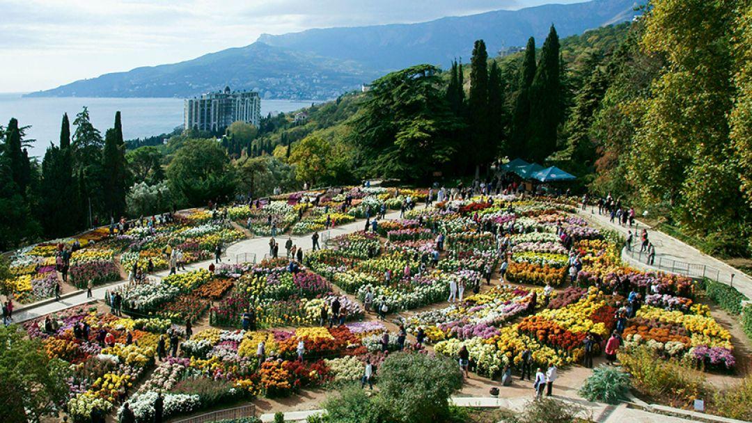 Никитский Ботанический сад и кактусовая оранжерея - фото 3