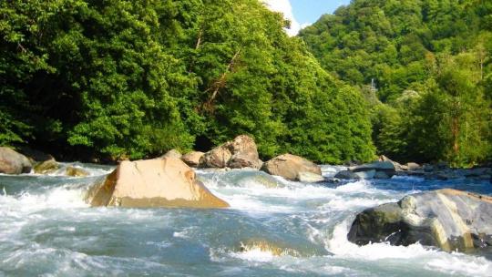 Дельта реки Мзымта в Сочи