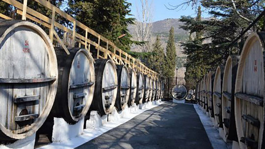 Дегустация вин в Массандре - фото 2