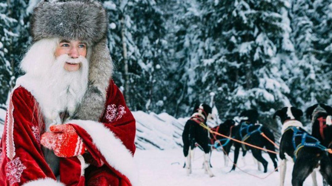 В гости к хаски и карельскому Деду Морозу в Санкт-Петербурге