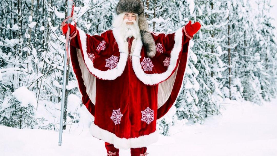 В гости к хаски и карельскому Деду Морозу - фото 3
