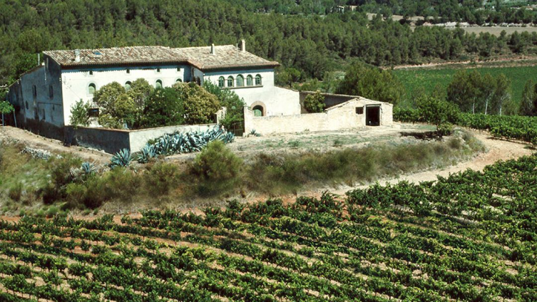 Посещение горы Монсеррат и винодельни Бодегас Торрес - фото 3