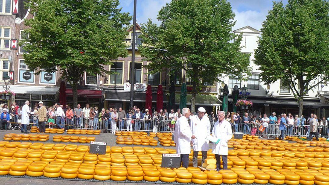 4-х часовая поездка на ярмарку сыров в Алкмаре - фото 2