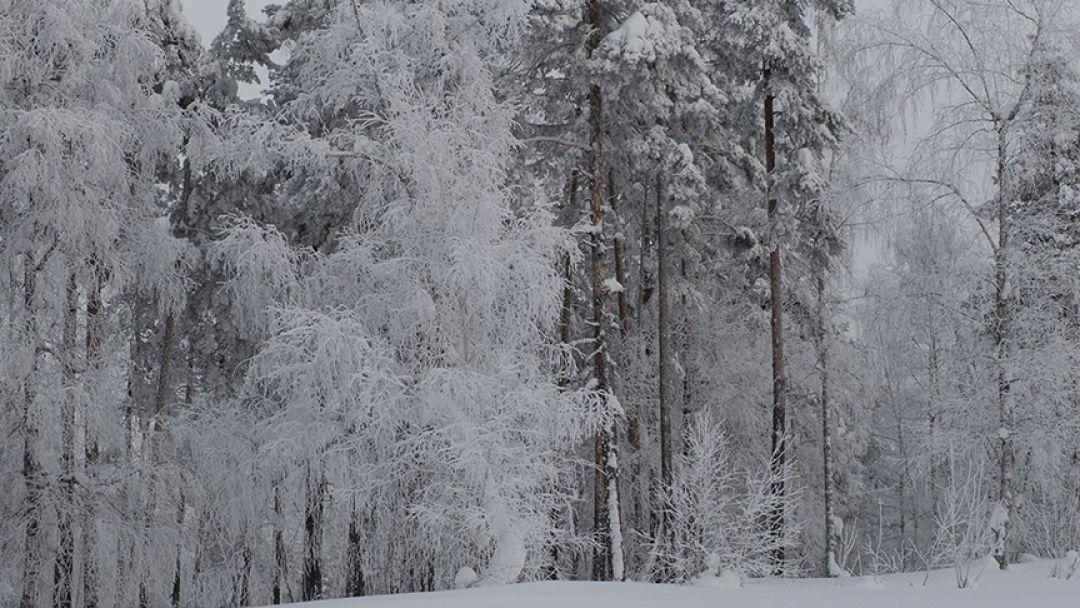 Снежный Крака, тур на 7 дней - фото 2