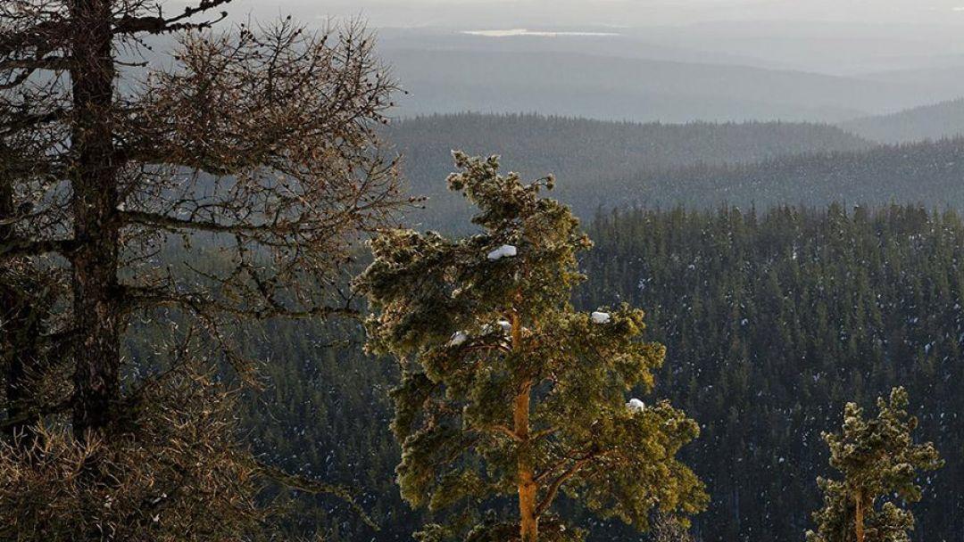 Уральский мультитур (зима), тур на 5 дней - фото 2