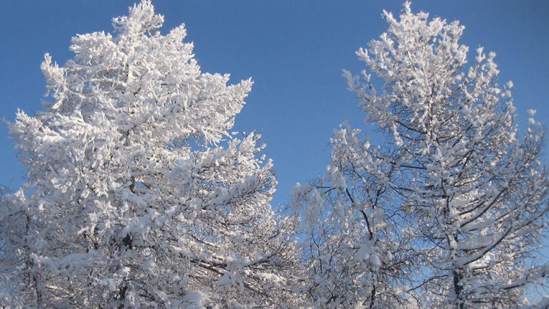 Снежный Крака, тур на 3 дня в Уфе