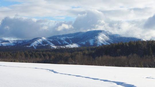 Экскурсия Зимняя Башкирия по Уфе