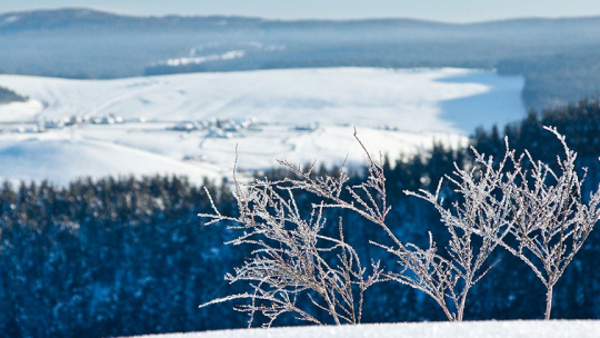 Экскурсия Через три заповедника Урала (зима), тур на 3 дня по Уфе