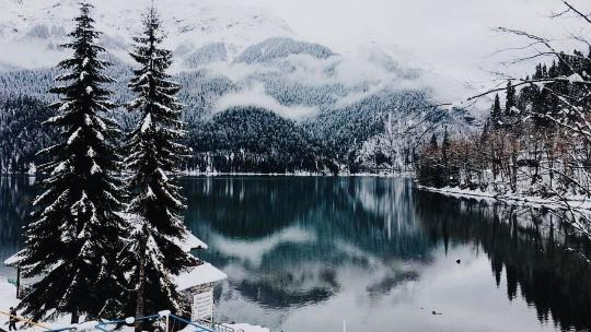 Экскурсия Абхазия: Зимняя Рица в Адлере