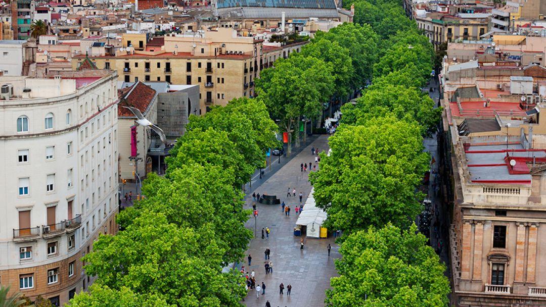 Готический квартал — сердце средневековой Барселоны - фото 2