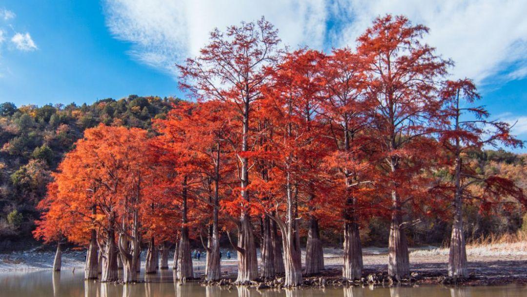 Заповедный Утриш и озеро кипарисов - фото 3