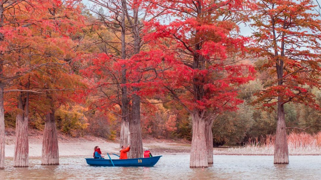 Заповедный Утриш и озеро кипарисов - фото 4