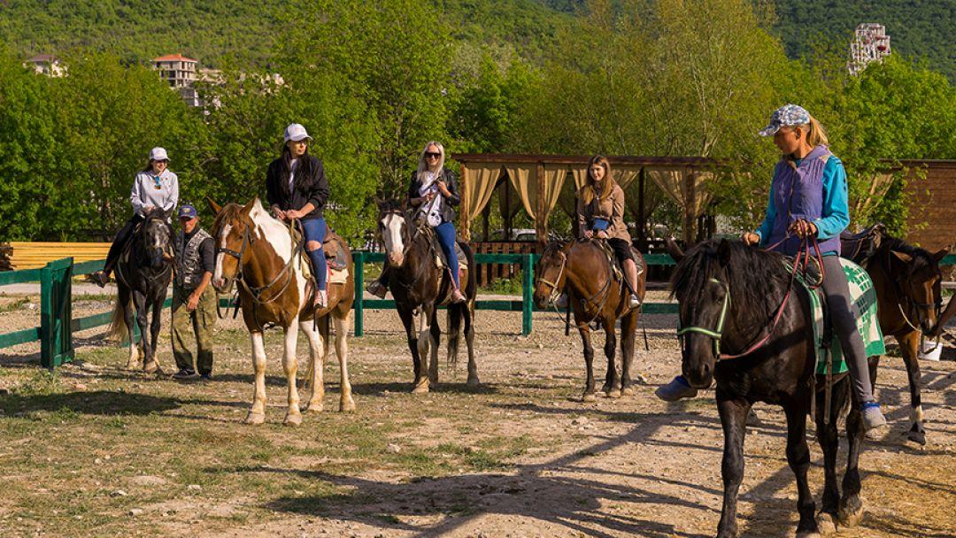 Конные прогулки: малый круг в Анапе