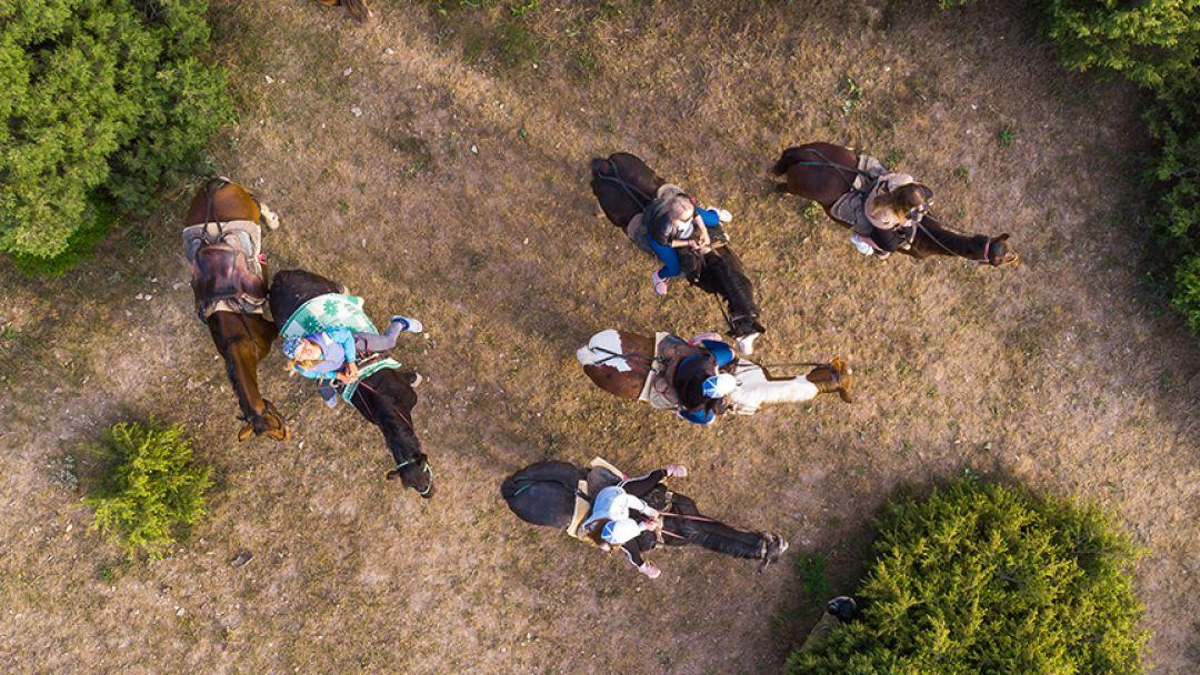 Фотосессия с лошадьми - фото 4
