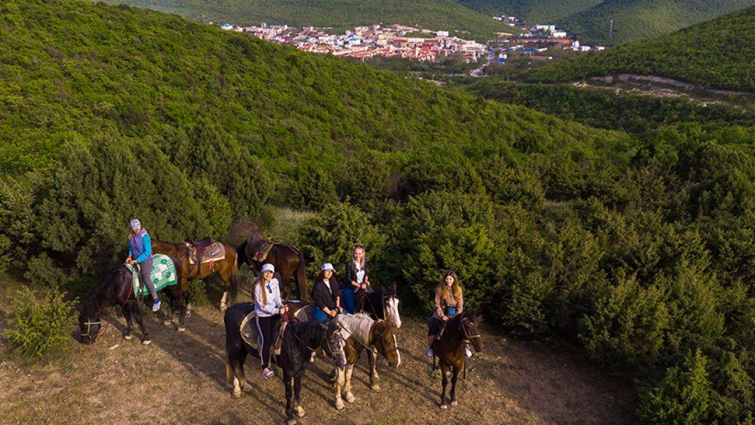 Конные прогулки: большой круг в Анапе