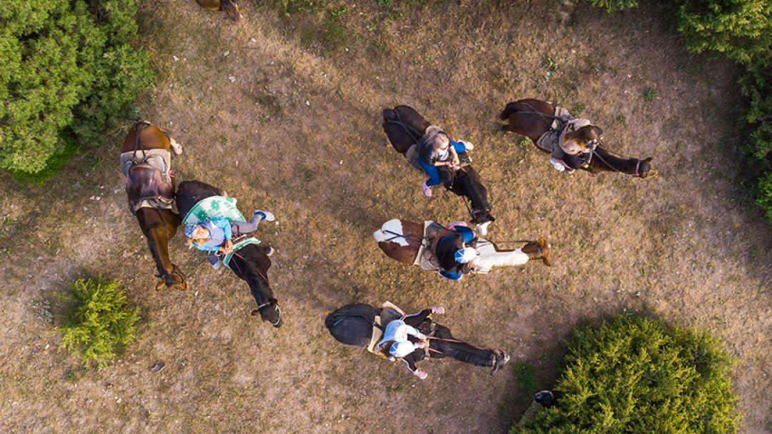 Конные прогулки: большой круг - фото 2